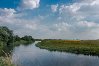 The River Hull at Eske looking south with Beverley Minster